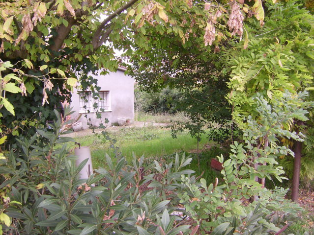 Casa Romagnola con terreno