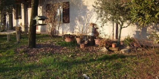 Casa indipendente con giardino vigneto e capannone art.