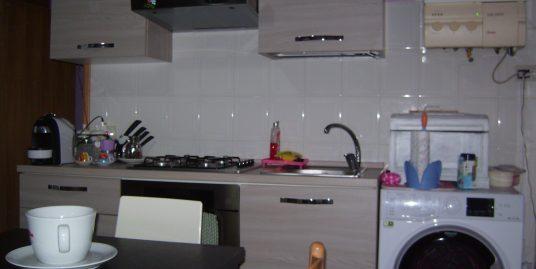 Appartamento ristrutturato (Romiti)